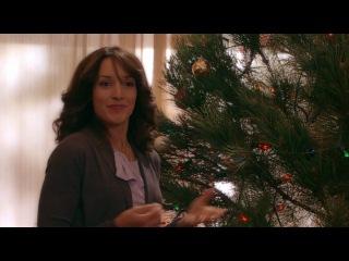 Рождественские приключения семейства Фоксов / The Night Before the Night Before Christmas (2010) HDRip